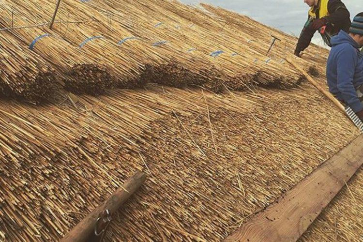 Как сделать камышовую крышу своими руками?